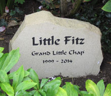 yorkshire stone grave for pet dog