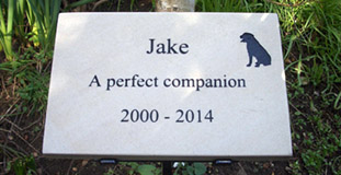 dog remembrance